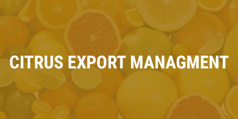citrus-export-management