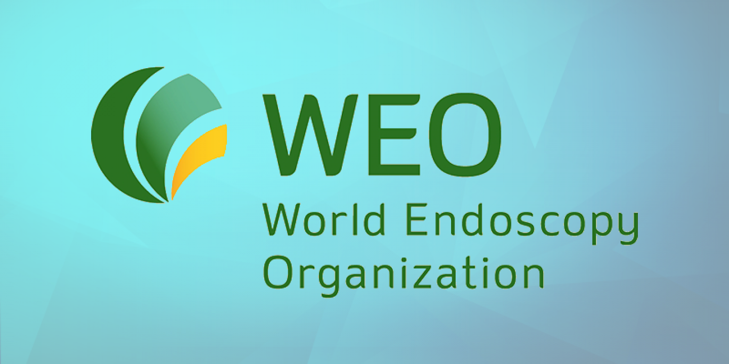 news-radventure-attended-weo